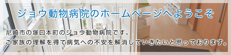 ジョウ動物病院のホームページへようこそ 尼崎市の塚口本町に開院しましたジョウ動物病院です。 ご家族の理解を得て病気への不安を解消していきたいと思っております。